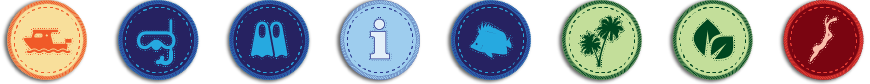 info badges