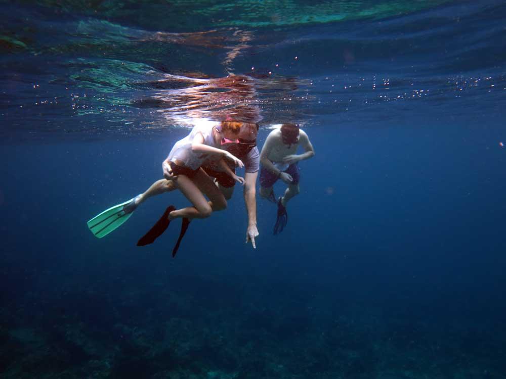 Manta spotting snorkelling at Koh Bon