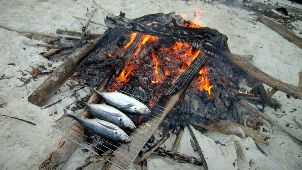 Barbecueing fish on the beach